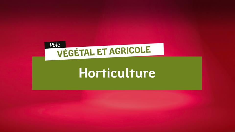 Vegetal-Horticulture